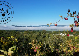 Champlain Orchards and Cidery