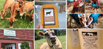 Meet the Dairy Farmers: Cedar Mountain Farm