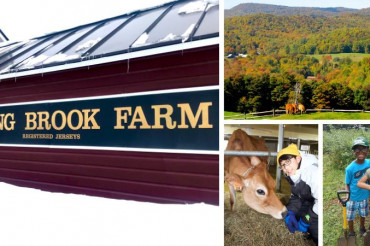 Meet the Dairy Farm: Spring Brook Farm
