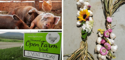 Vermont Classic: Open Farm Week 2019