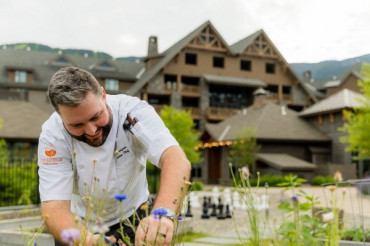 Cheers to the 2019 Gold Barn Chefs
