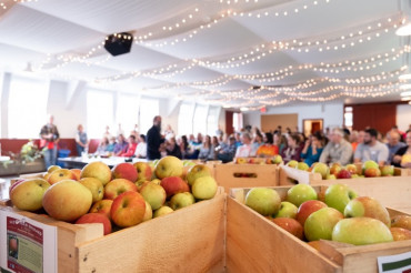 Celebrate Heirloom Apples at Scott Farm: Heirloom Apple Day, PYO & Educational Workshops