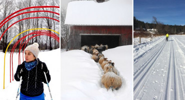 Winter Farm Trails in Vermont