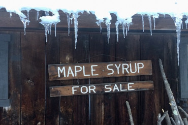 Bragg Farm Sugarhouse Tours | The Maple 100