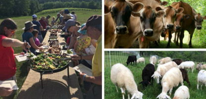 First Timers: Open Farm Week 2018