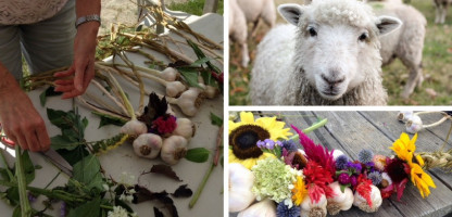 Learn Something New: Open Farm Week 2019